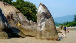 Hai auf Goa